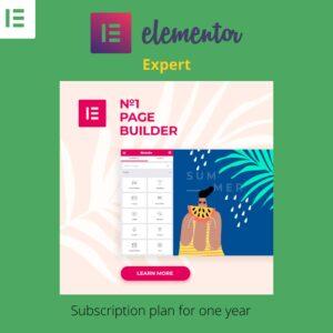 Elementor Pro Expert